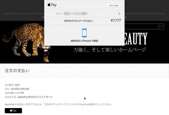 applepay_mac